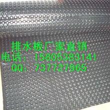 南宁塑料夹层板柳州滤水板2公分排水板供应批发