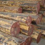 青岛木材进口代理报关有限公司报价