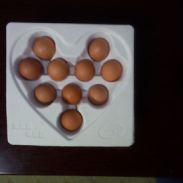 10枚心形鸡蛋托/鸡蛋盒内包装图片