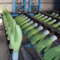 浸胶手套生产线链条图片