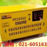 供应美国SHWIL25KW汽油发电机