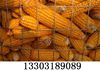 供应圈玉米电焊网