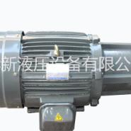 群策油泵电机11KW  C15-43B0图片
