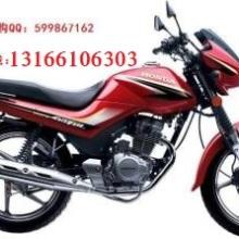 供应新大洲本田SDH125-49金锋锐摩托车