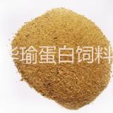 供应中国肉粉