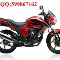供应五羊本田RR150(幻影150骑式摩托车