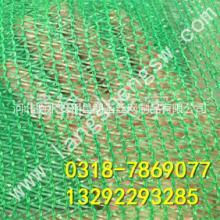 厂家直销绿色盖土网%绿色两针盖土网%优质盖土网