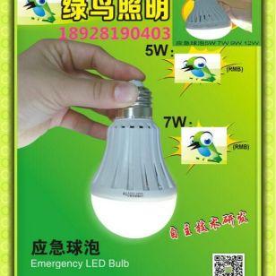 【节能灯】应急停电国家灯,24V图片