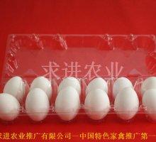鸭蛋包装盒供应     鸭蛋包装盒批发