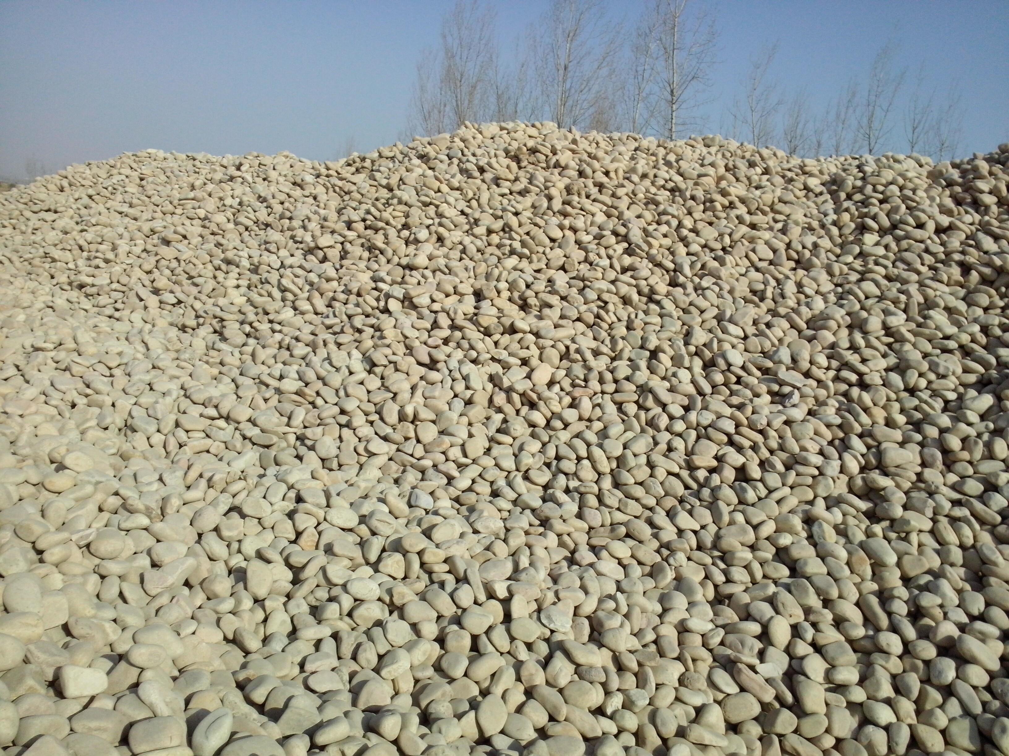 供应太原道路铺设鹅卵石价格鹅卵石厂家