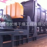 啤酒泥空心浆叶干化机KJG-17图片