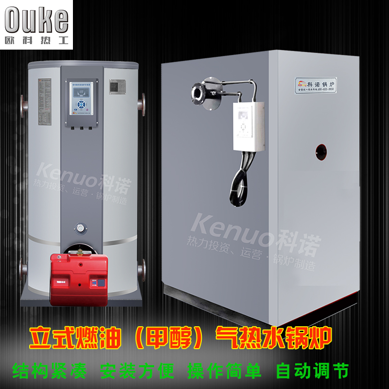 锅炉采暖洗浴多用炉/立式燃气热水锅炉厂家及报价