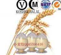供应中食都庆牌一级小麦低聚肽-生产商-供应商-批发商