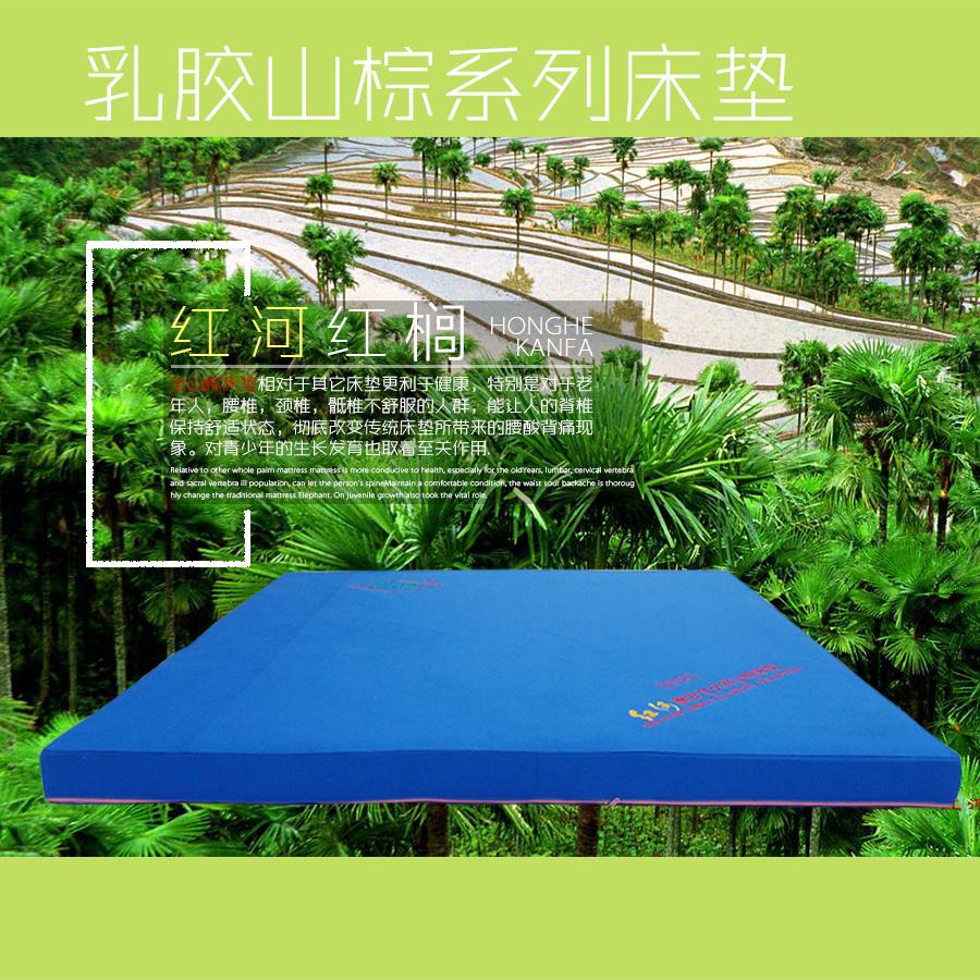 供应红榈乳胶山棕床垫系列10厘米