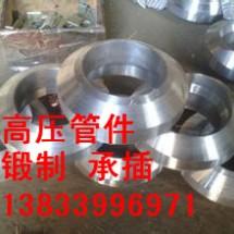 供应用于高压管道的嘉禾16mn接管座 天燃气管道支管台 高压支管座专业生产厂家