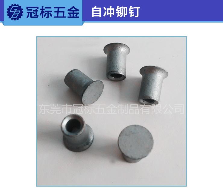 供应用于不锈钢的自冲铆钉 柳钉直销 非标五金件