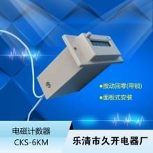 CSK6-YKW电磁计数器厂家批发 电磁计数器6位 CSK6-YKW电磁计数器6位图片