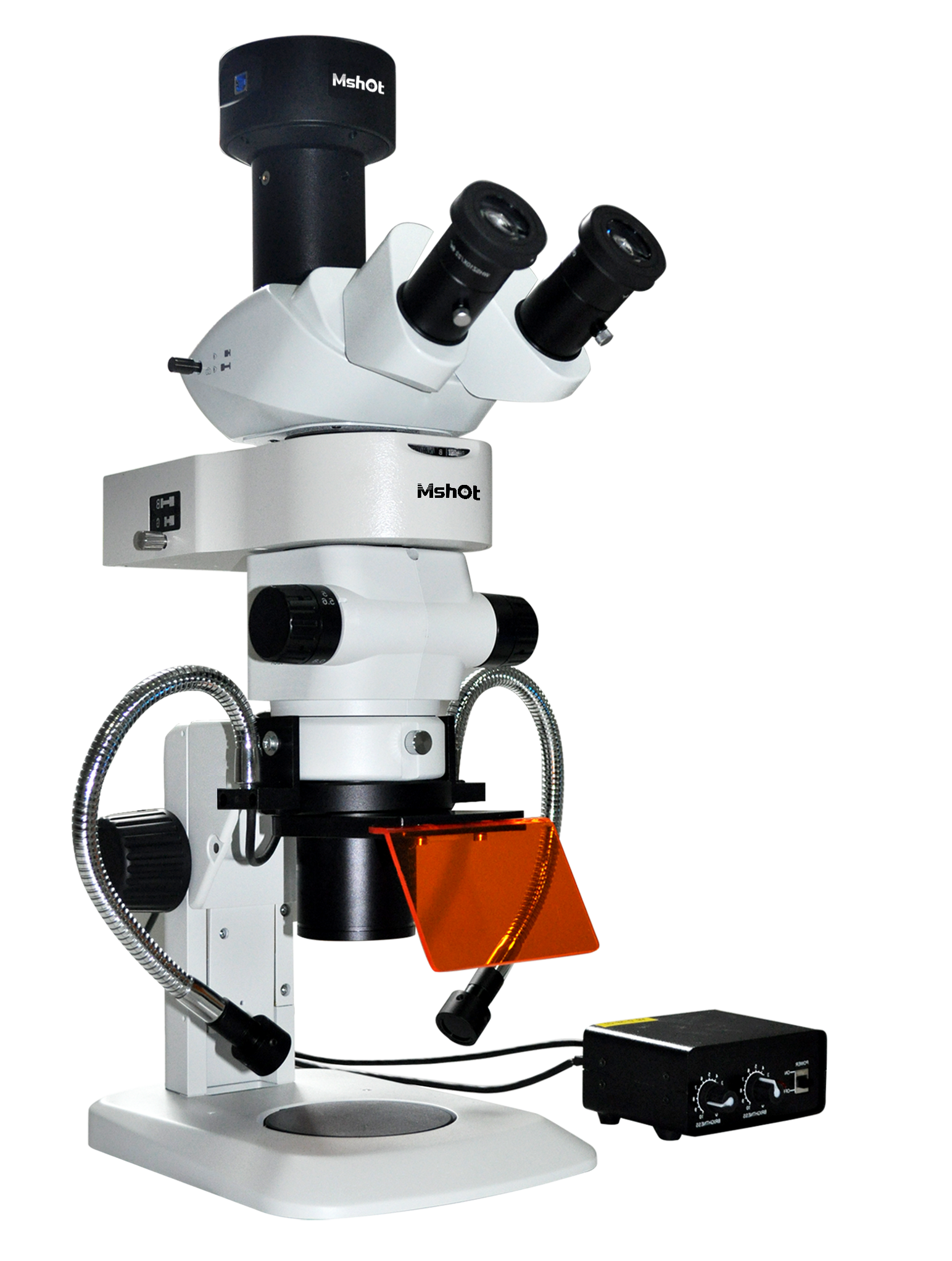 【荧光显微镜图片大全】荧光显微镜图片库