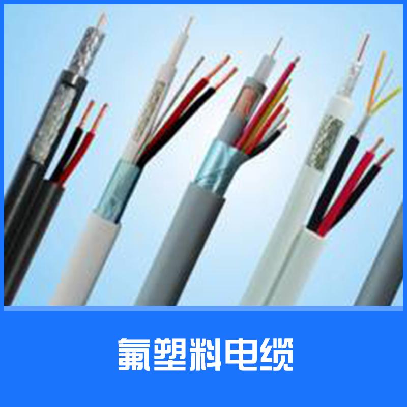 氟塑料电缆图片/氟塑料电缆样板图 (2)
