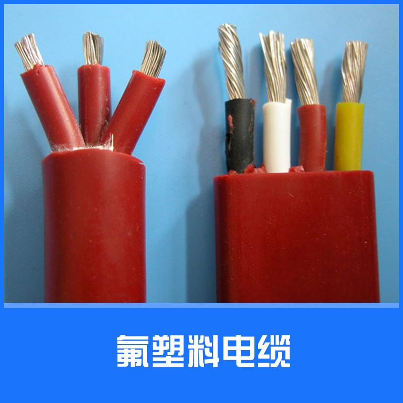 氟塑料电缆图片/氟塑料电缆样板图 (1)