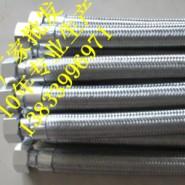 DN20丝扣型金属软管图片