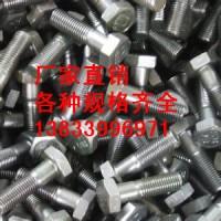 供应用于12.8的全螺纹螺栓M16*100 六角头螺栓批发价格