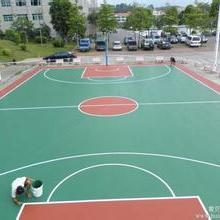 供应用于的五华区排球场围网工程| 坚硬耐磨,渗透力强批发