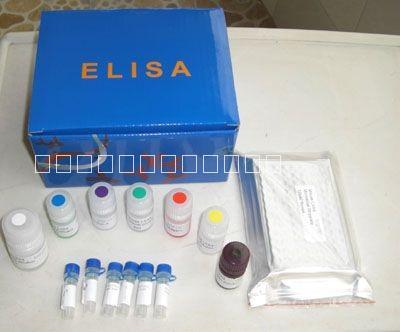 人白介素6(IL-6ELISA