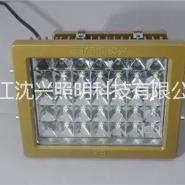 120W系列防爆高效LED投光图片