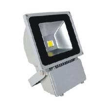 供应FS-F100L投射灯