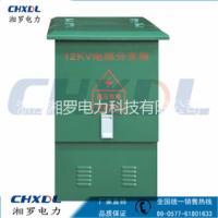 供应欧式10kv高压电缆分支箱环网柜计量柜