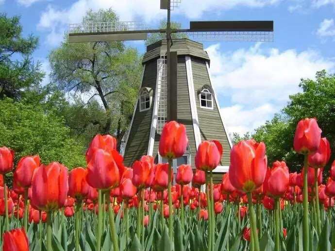 荷兰风车模型展览展示图片租赁图片大全