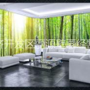 3D森林壁纸空间背景墙纸图片