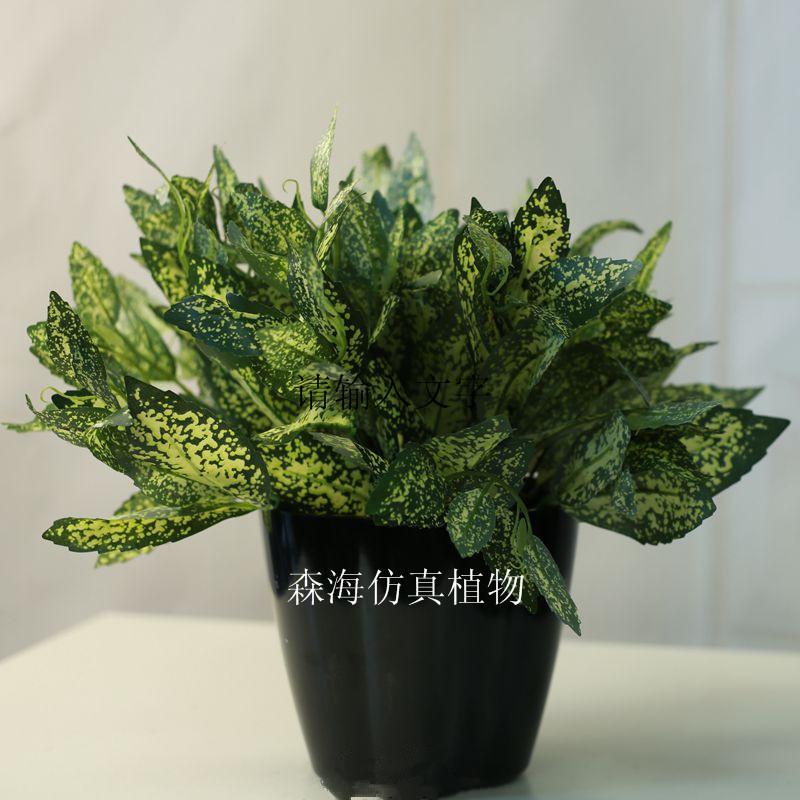 供应用于室内景观装饰的人造星点木仿真植物绿植盆栽