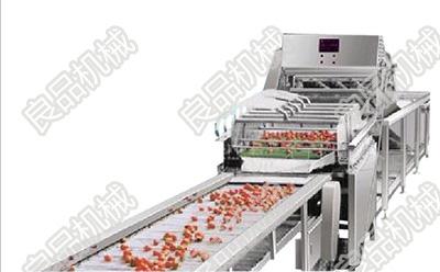 供应用于蔬菜清洗机的【蔬菜清洗机】最新报价老字号