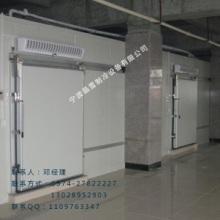 供应厂家直销生产定制制冷设备保鲜冷库气调冷库