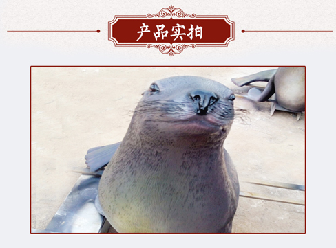 广州动物雕塑,动物雕塑设计,老虎,狮子雕塑定做,规格,价格