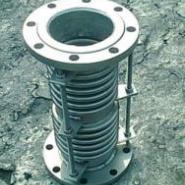 复式补偿器DN200PN2.5图片
