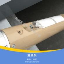 供应郑州拓邦贸易有限公司原装潜油泵安全标准潜油泵加油站潜油泵图片