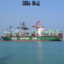 裕锋达海运代理专业供应从深圳发海运拼箱出口到芬兰批发