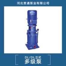 供应DL.DL立式多级泵  专业立式多级泵 高效立式多 河北DL.DL立式多级泵
