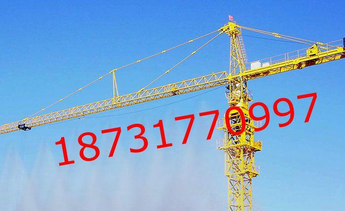 塔吊除尘减雾霾喷淋系统价格