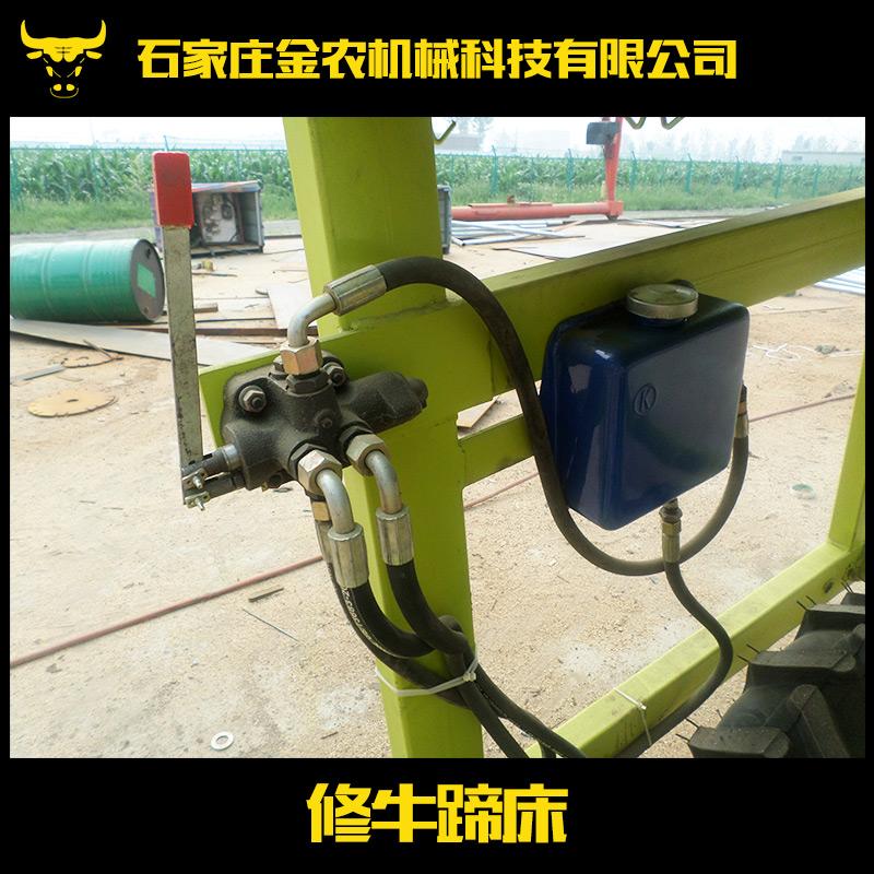 供应修牛蹄床 牛用设备批发 修牛蹄床供应 修蹄床价格
