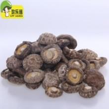 供应产地特级茶花菇干货批发_西峡花菇 冬菇 干香菇菌类_干货一键批发网