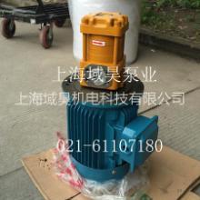 供应剪板机NT3-G20F齿轮泵