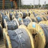 福建远东电缆 福建远东氟塑料绝缘氟塑料护套电力电缆价格