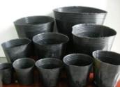 供应育苗杯厂家直销 营养钵 育苗袋 营养袋 营养杯 黑色塑料花盆