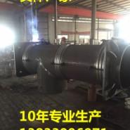 曲管压力平衡补偿器DN100图片