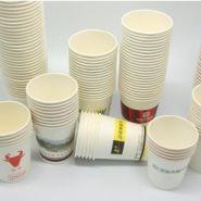 环保一次性纸杯,高档广告纸杯定做图片