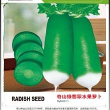 奇山绿翡翠2号萝卜种子报价